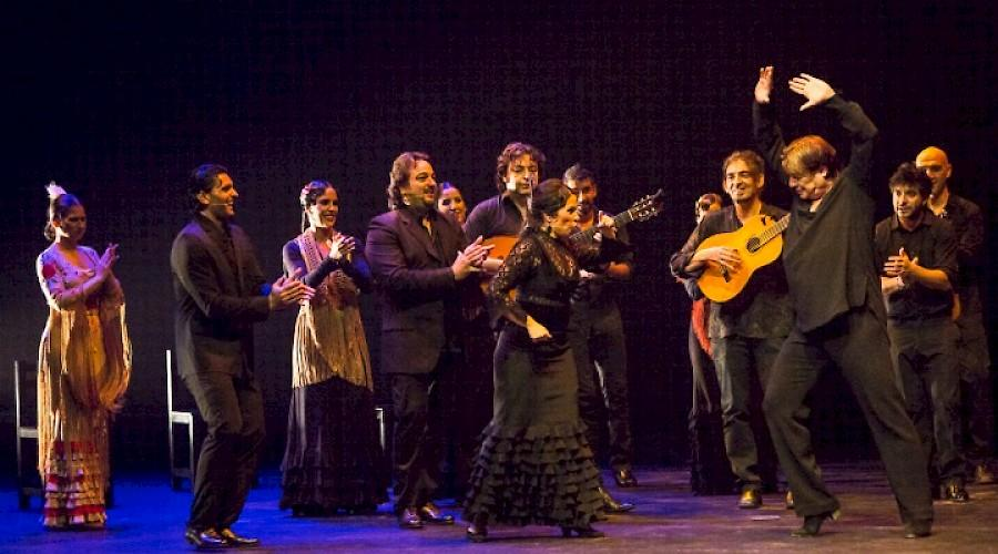 Flamenco Festival 2014 in Boston