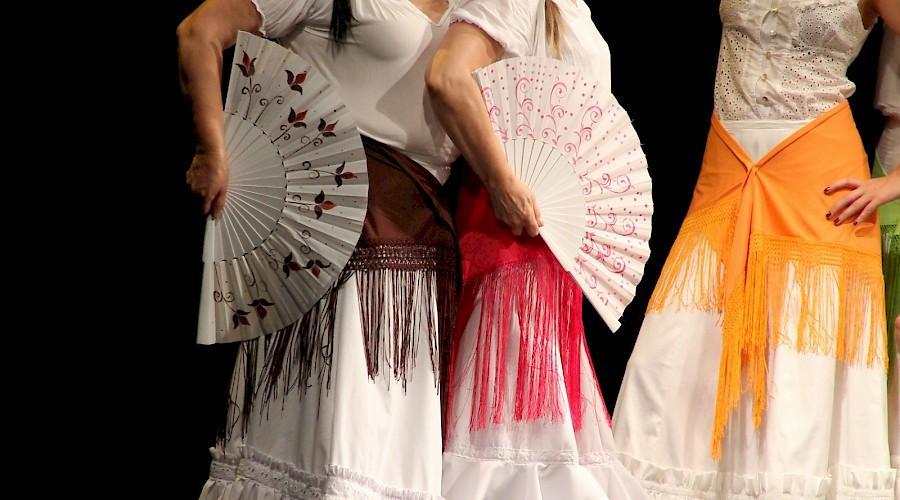 La Verbena De La Paloma A Spanish Cultural Event In Washington
