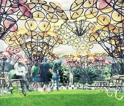 Organic Growth. Summer Pavilion on Governors Island 2015