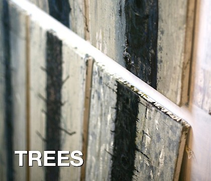 Trees: A Solo Exhibition by Hugo Fontela