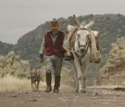 Donkeyote and La Chana at AFI DOCS