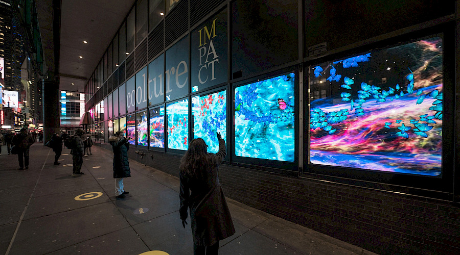 New York's leading role in the field of art in public spaces